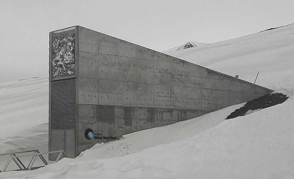 Die Svalbard Global Seed Vault, zu Deutsch 'Weltweiter Saatgut-Tresor auf Svalbard', ist eine sichere Samenbank auf der norwegischen Insel Spitzbergen in der Nähe von Longyearbyen im abgelegenen arktischen Svalbard Archipel, etwa 1300 km vom Nordpol entfernt. Im Tresor sind eine Vielzahl von Pflanzensamen aufbewahrt, Duplikate von Samen, die weltweit in Genbanken gelagert werden. Der Samentresor ist eine Versicherung gegen den Verlust von Samen in anderen Genbanken durch großräumige regionale oder globale Krisen. (Bild: Wikipedia, Miksu)