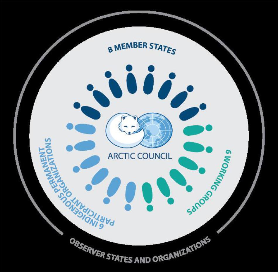 Die Zusammensetzung des Arktischen Rates Grafik: Arctic Council