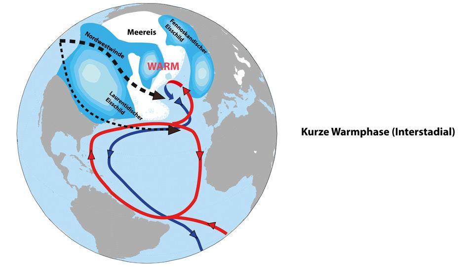 Die Nordhalbkugel im «Interstadial» (kurze, warme Zwischenphasen während der Eiszeit) In den lang anhaltenden Kaltphasen wuchsen die Eisschilde weiter an. Bei höheren Eisschilden über Nordamerika, wie sie dann in Zeiten mittlerer Meeresspiegelhöhen typisch waren, trennten sich die vorherrschenden Nordwestwinde in zwei Arme auf. Die Hauptwindströmung verlief nördlich des so genannten Laurentidischen Eisschildes und sorgte dafür, dass auch die Meereisgrenze vor der europäischen Küste sich gen Norden verlagerte.