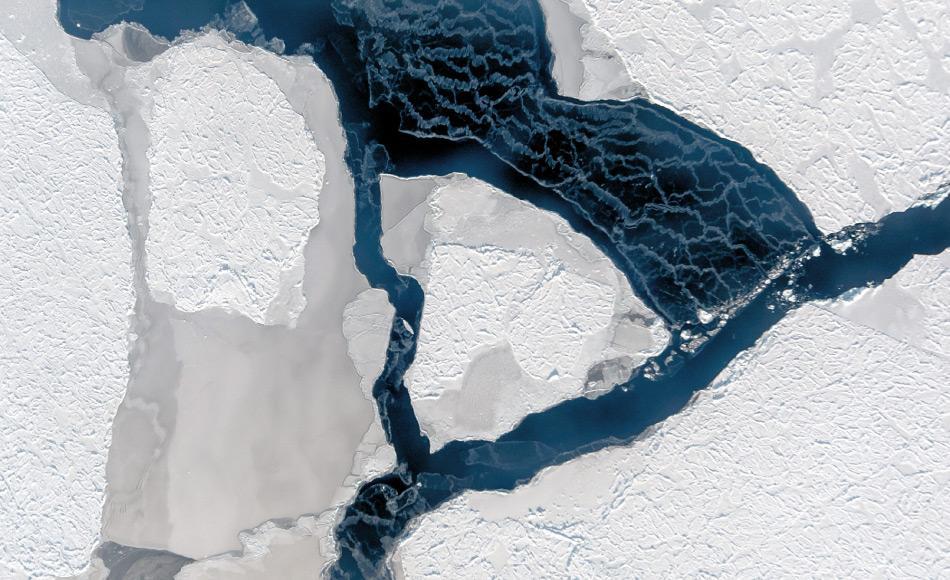Der Wind hat ein Eisfeld auseinander getrieben und eine Fläche offenen Wassers geschaffen. Dessen Oberfläche gefriert sofort wieder, wie die weißen Schlieren verraten. Sie entstehen, wenn der Wind lose Eiskristalle verweht. (Foto: IceCam/Stefan Hendricks)